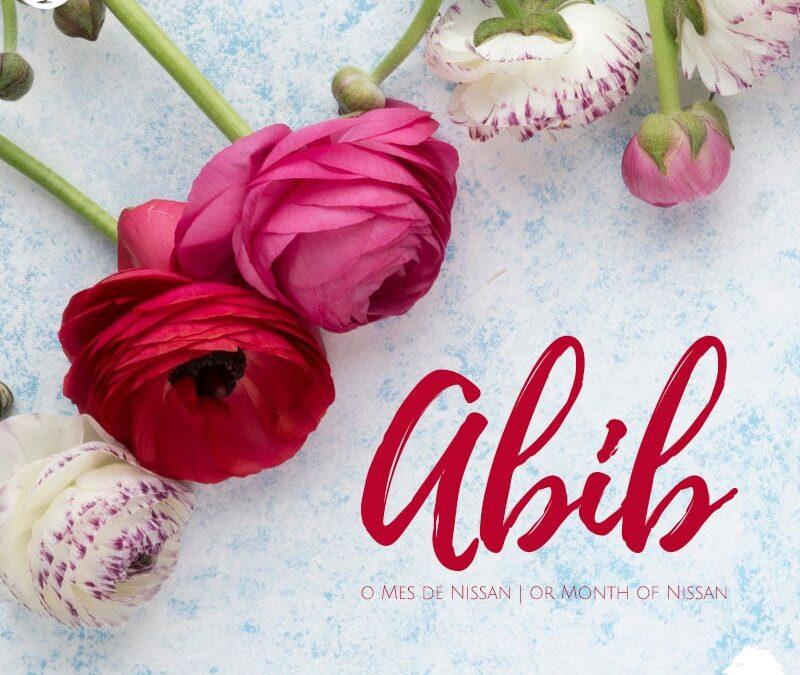 Abibe bíblia na de mês Deuteronômio 16
